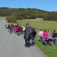 Classes vertes – Domaine de Massembre 2012
